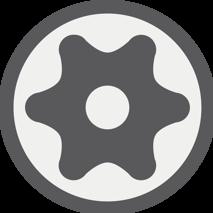T profil (pro torx) s otvorem