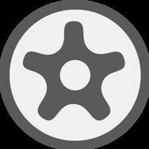 TS profil (pro Torx Plus)